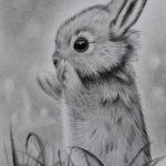 Grafiet tekening 'Lil' Bunny', 10x15cm, potlood op Canson Bristol